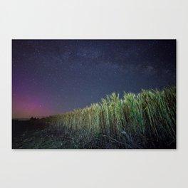 Wheat Field Planetarium Canvas Print