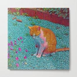 Popular Animals - Cat Metal Print