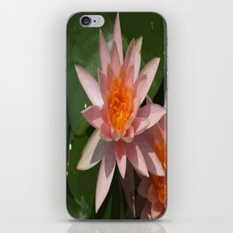 Beautiful Peach Waterlily Vector iPhone Skin