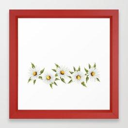 Chamomile (White) Framed Art Print