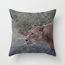 Prowling Lioness Throw Pillow