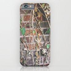 A New Era Slim Case iPhone 6s