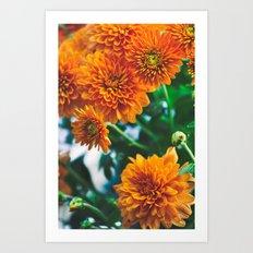 Flower No. 2 Art Print