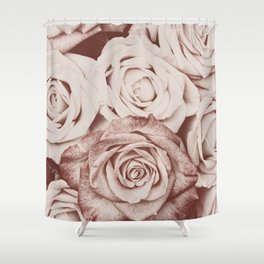 Latte roses Shower Curtain