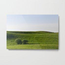 landscape at dawn Metal Print