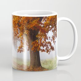 Oaks in the misty Autumn morning (Golden Polish Autumn) Coffee Mug