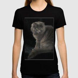 Cat Grey Cat Cute Gray Cat Long Haired Cat Green Eyes Green Eyed Cat Beautiful Cat T-shirt