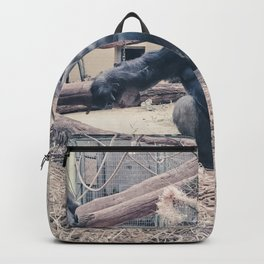 Gorilla Backpack