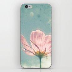Pink Cosmos iPhone & iPod Skin