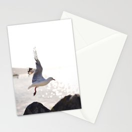 Seagull takes flight over Dunedin's MacAndrew Bay Stationery Cards