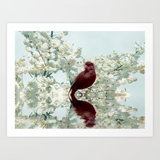 Spring call Art Print
