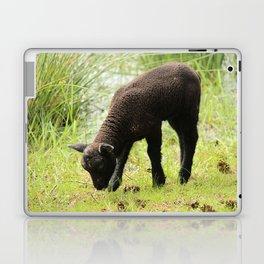 Grazing Black Lamb Laptop & iPad Skin