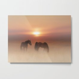 Horses in a misty dawn Metal Print