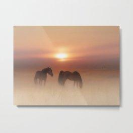 Horses in a misty dawn Metal Print