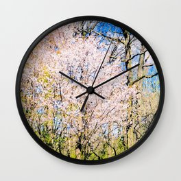 Blooming Trees In The Park On A Sunny Day Of Spring Wall Clock