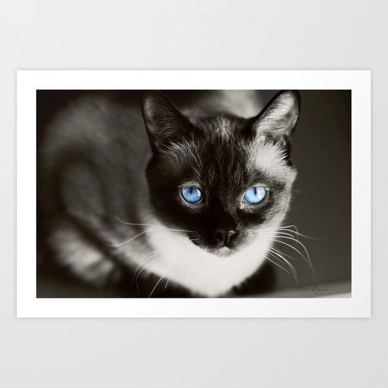 Stoney Blue Art Print