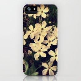 Phlox iPhone Case