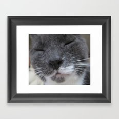 Cutest Kitty-cat ever! Framed Art Print