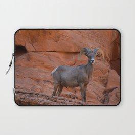 Desert Bighorn - Valley of Fire Laptop Sleeve