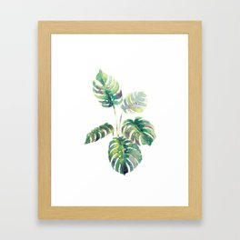 Monstera - Print Framed Art Print