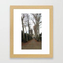 Spooky Trees Framed Art Print