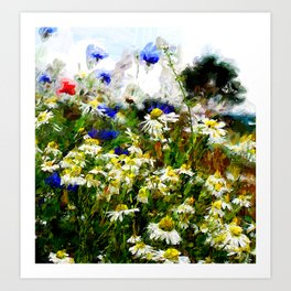Camomile Meadow Art Print