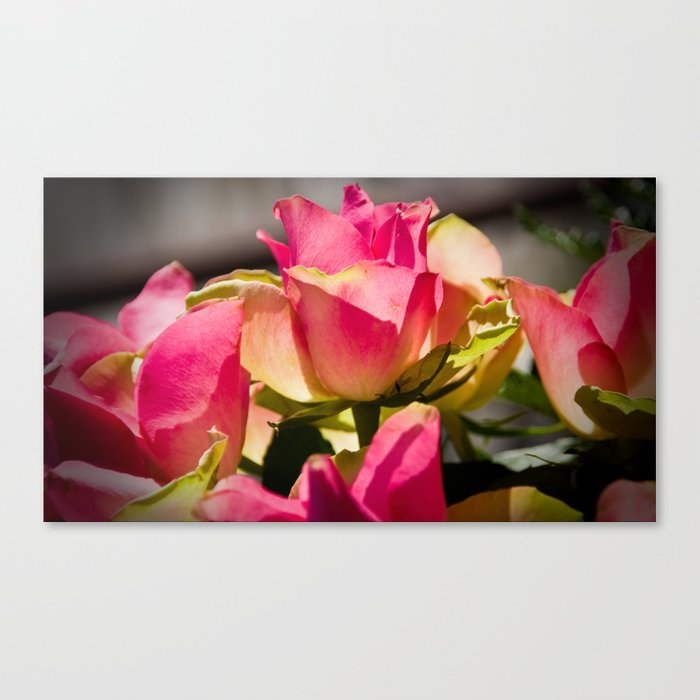 Queen Of Roses Canvas Print