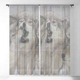 Family Squabble Sheer Curtain
