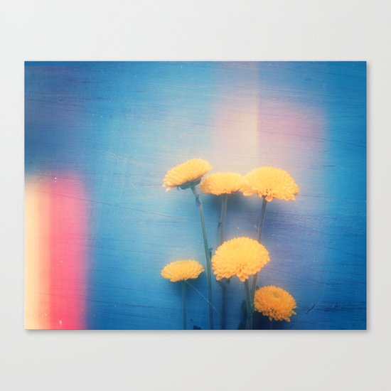 Little Yellow Flowers on a Blue Day Canvas Print