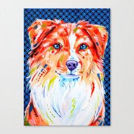 Hamish - Red Border Collie Canvas Print