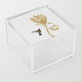 Hummingbird & Flower I Acrylic Box