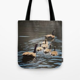 Canada Geese with Goslings - Square Photo Tote Bag