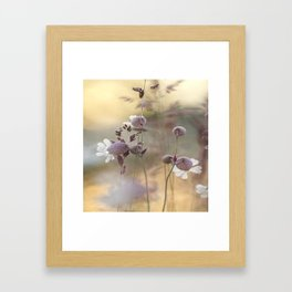 PARADISE5 Framed Art Print