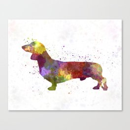 Dachshund in watercolor Canvas Print