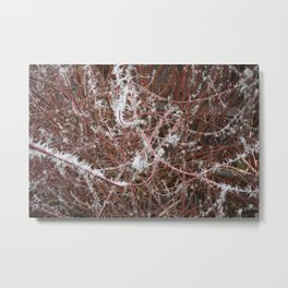 Red Frost Spiked Branches Metal Print