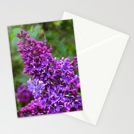 Vivid and Fragrant Purple Lilacs Stationery Cards