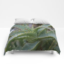 Aloe Vera Leaves  Comforters