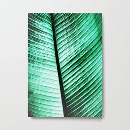 Maurelli Hard Green Banana Tree Leaf Metal Print