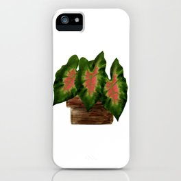 Potted Big Green Pink Leaves iPhone Case