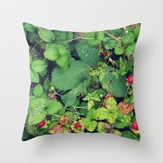 Blanketed Throw Pillow