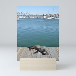 Sea Lion Smile Mini Art Print