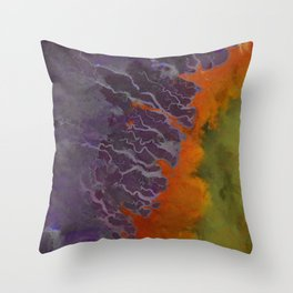 Ganges River Delta Aerial View Throw Pillow