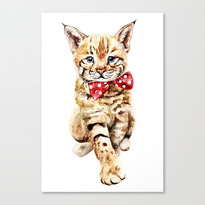Bobcat Canvas Print