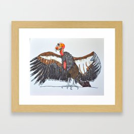 California Condor Framed Art Print