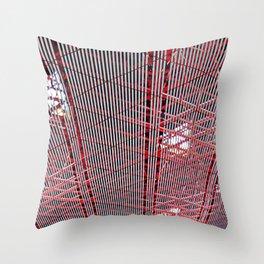 A Capital Ceiling Throw Pillow