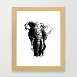 African bush elephant Framed Art Print