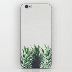 Pineapple Leaves iPhone Skin