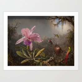 Cattelya Orchid And Three Brazilian Hummingbirds 1 By Martin Johnson Heade | Reproduction Art Print