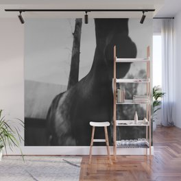 Horse at the Zoo Black and White Wall Mural