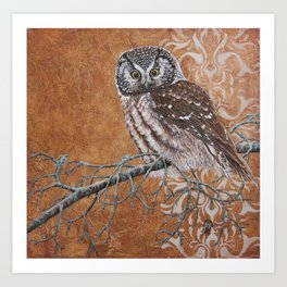 Pearly - Boreal owl painting Art Print